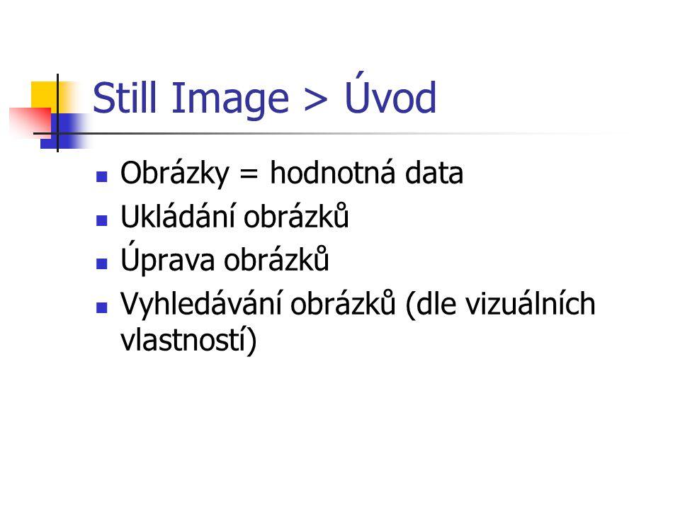 Still Image > Úvod Obrázky = hodnotná data Ukládání obrázků Úprava obrázků Vyhledávání obrázků (dle vizuálních vlastností)