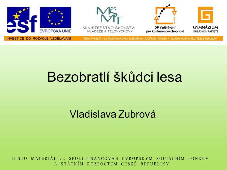 Bezobratlí škůdci lesa Vladislava Zubrová