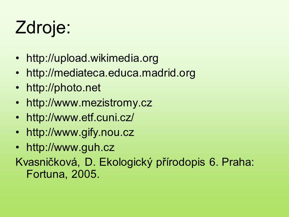 Zdroje: http://upload.wikimedia.org http://mediateca.educa.madrid.org http://photo.net http://www.mezistromy.cz http://www.etf.cuni.cz/ http://www.gif