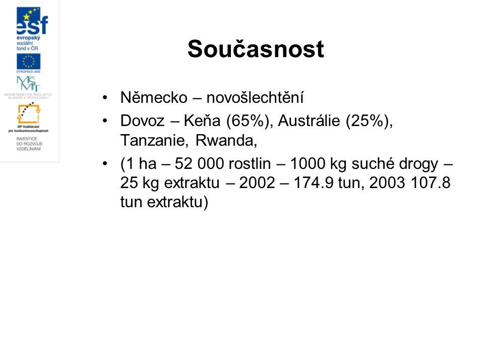 Současnost Německo – novošlechtění Dovoz – Keňa (65%), Austrálie (25%), Tanzanie, Rwanda, (1 ha – 52 000 rostlin – 1000 kg suché drogy – 25 kg extrakt