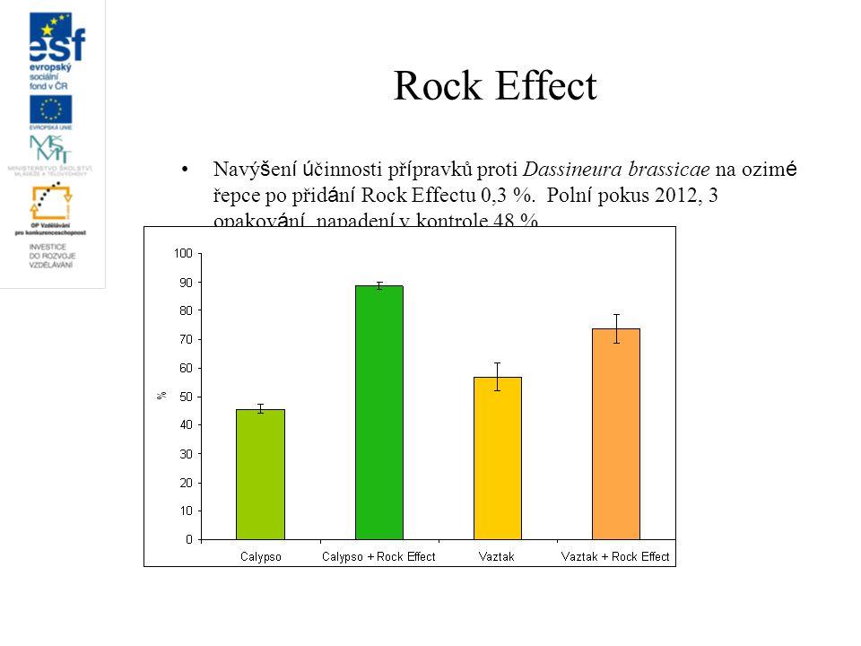 Rock Effect Navý š en í ú činnosti př í pravků proti Dassineura brassicae na ozim é řepce po přid á n í Rock Effectu 0,3 %. Poln í pokus 2012, 3 opako