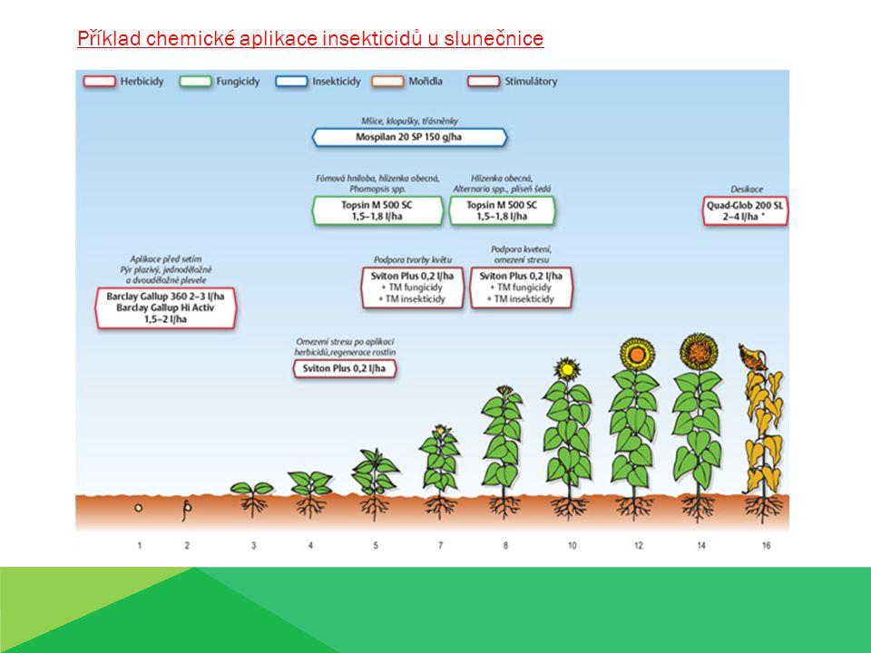Příklad chemické aplikace insekticidů u slunečnice