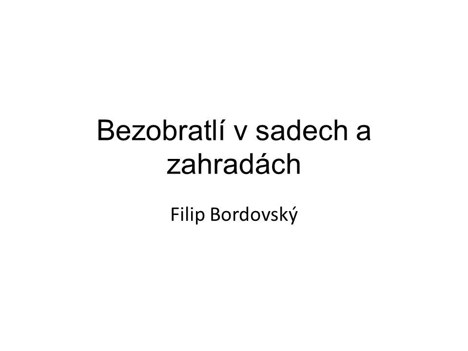 Bezobratlí v sadech a zahradách Filip Bordovský