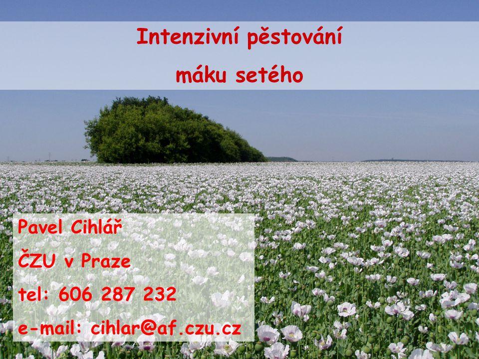 Intenzivní pěstování máku setého Pavel Cihlář ČZU v Praze tel: 606 287 232 e-mail: cihlar@af.czu.cz
