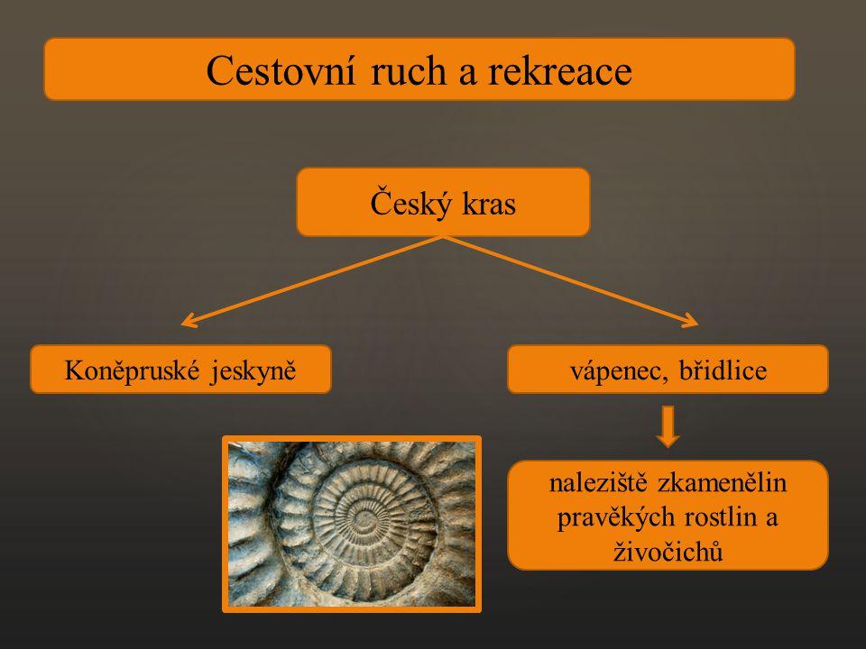Cestovní ruch a rekreace Český kras Koněpruské jeskyněvápenec, břidlice naleziště zkamenělin pravěkých rostlin a živočichů