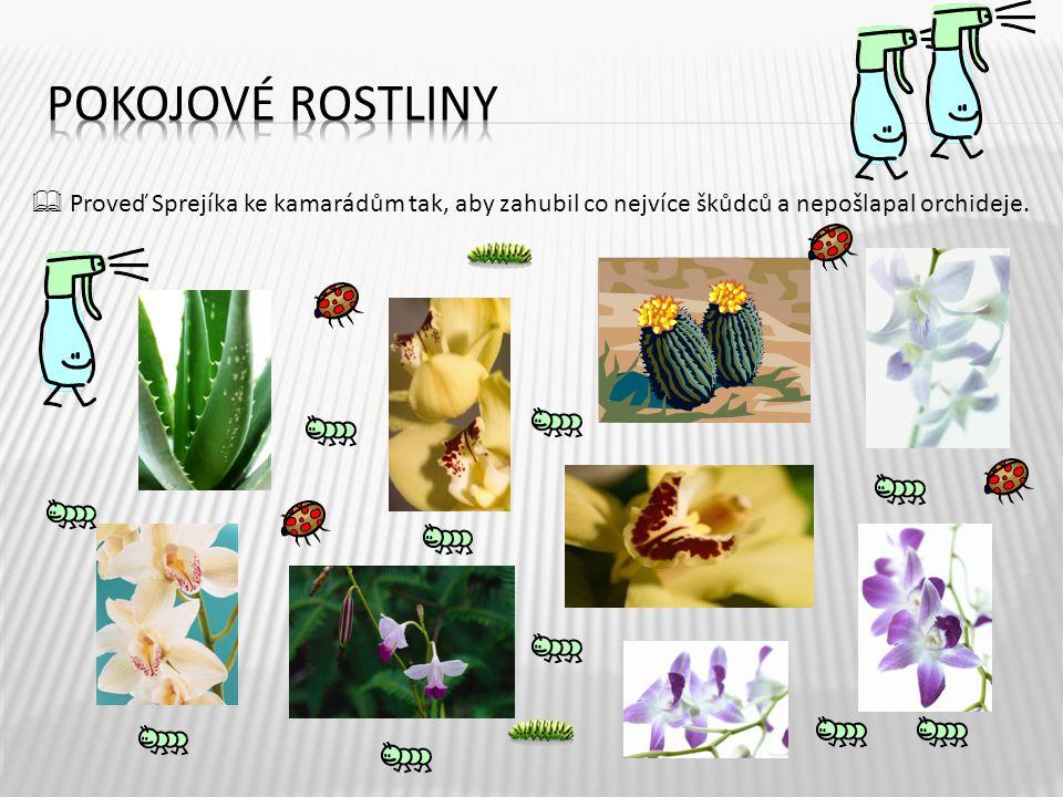  Proveď Sprejíka ke kamarádům tak, aby zahubil co nejvíce škůdců a nepošlapal orchideje. 7