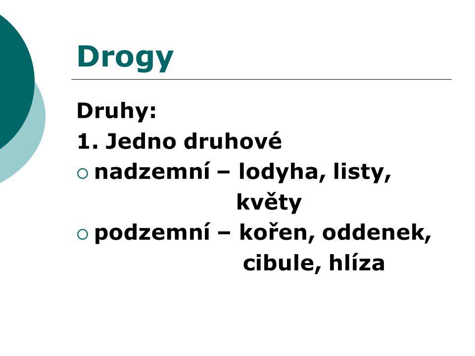 Drogy Druhy: 1. Jedno druhové  nadzemní – lodyha, listy, květy  podzemní – kořen, oddenek, cibule, hlíza
