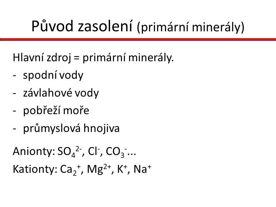 Původ zasolení (primární minerály) Hlavní zdroj = primární minerály.