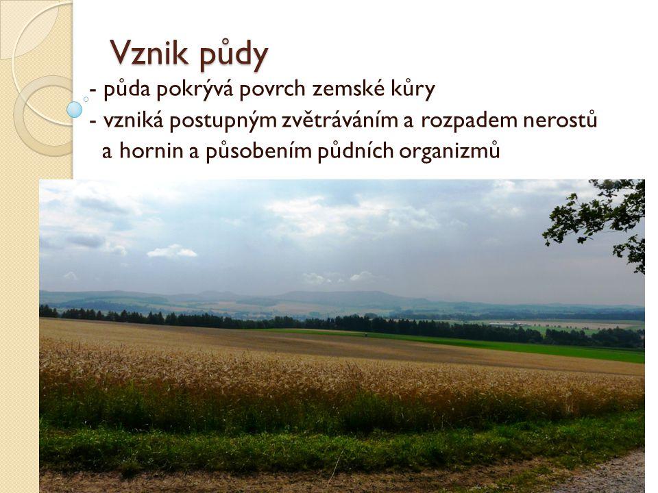Vznik půdy - půda pokrývá povrch zemské kůry - vzniká postupným zvětráváním a rozpadem nerostů a hornin a působením půdních organizmů