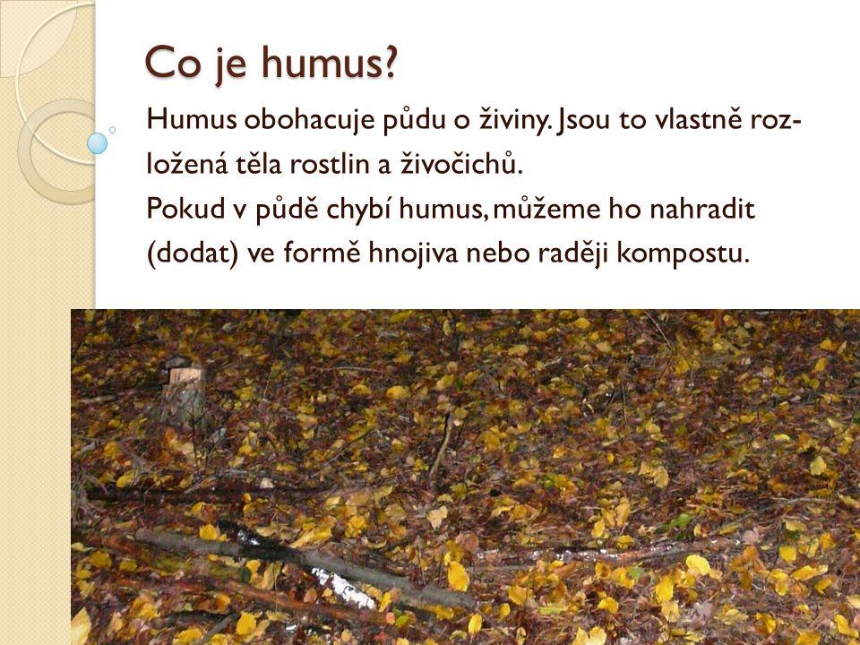 Co je humus.Humus obohacuje půdu o živiny. Jsou to vlastně roz- ložená těla rostlin a živočichů.