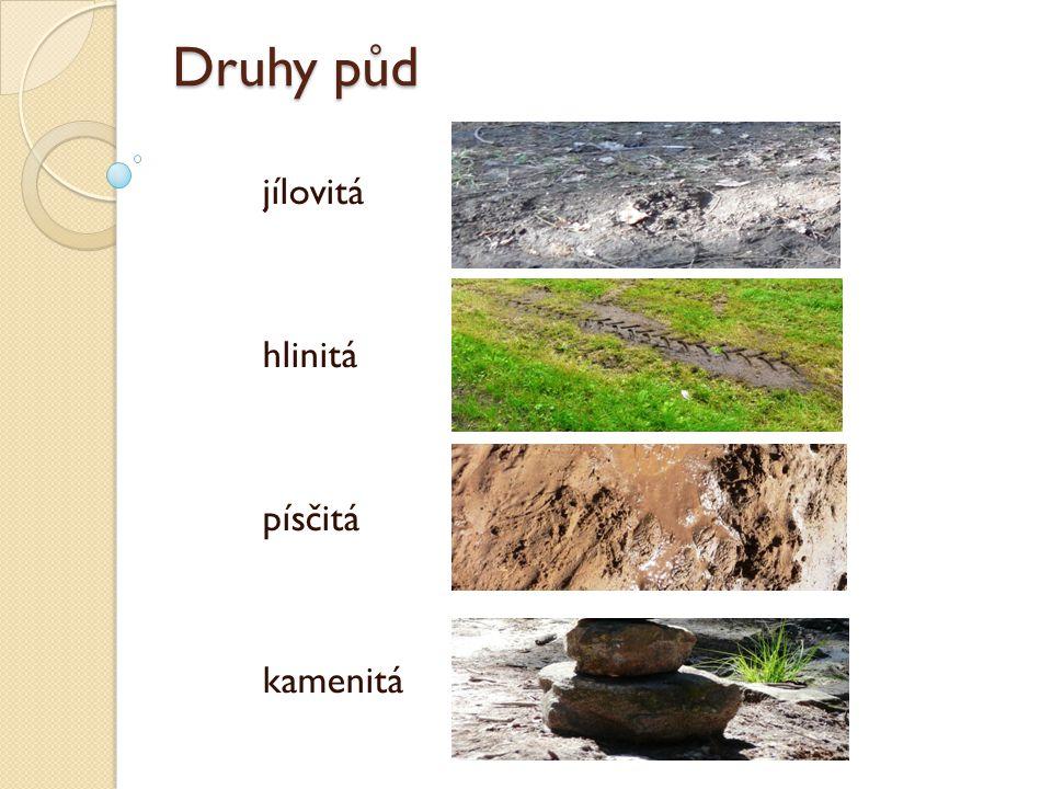 Druhy půd jílovitá hlinitá písčitá kamenitá