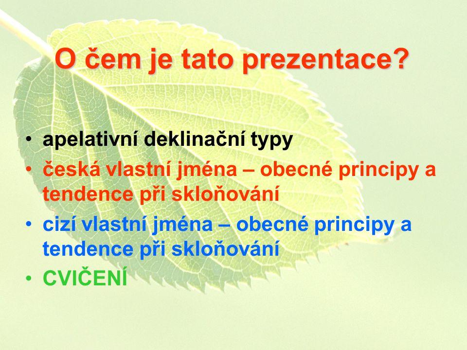 O čem je tato prezentace? apelativní deklinační typy česká vlastní jména – obecné principy a tendence při skloňování cizí vlastní jména – obecné princ