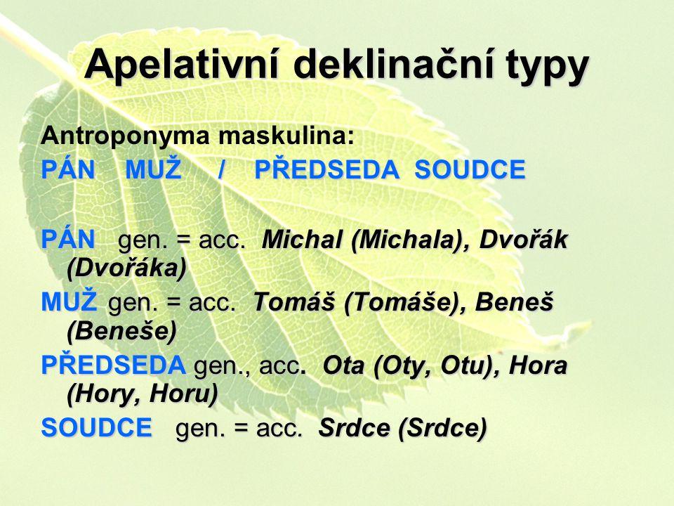 Apelativní deklinační typy Antroponyma maskulina: PÁN MUŽ / PŘEDSEDA SOUDCE PÁN gen. = acc. Michal (Michala), Dvořák (Dvořáka) MUŽgen. = acc. Tomáš (T