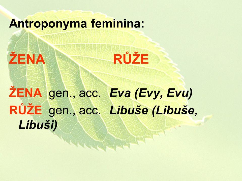 Antroponyma feminina: ŽENA RŮŽE ŽENA gen., acc. Eva (Evy, Evu) RŮŽE gen., acc. Libuše (Libuše, Libuši)