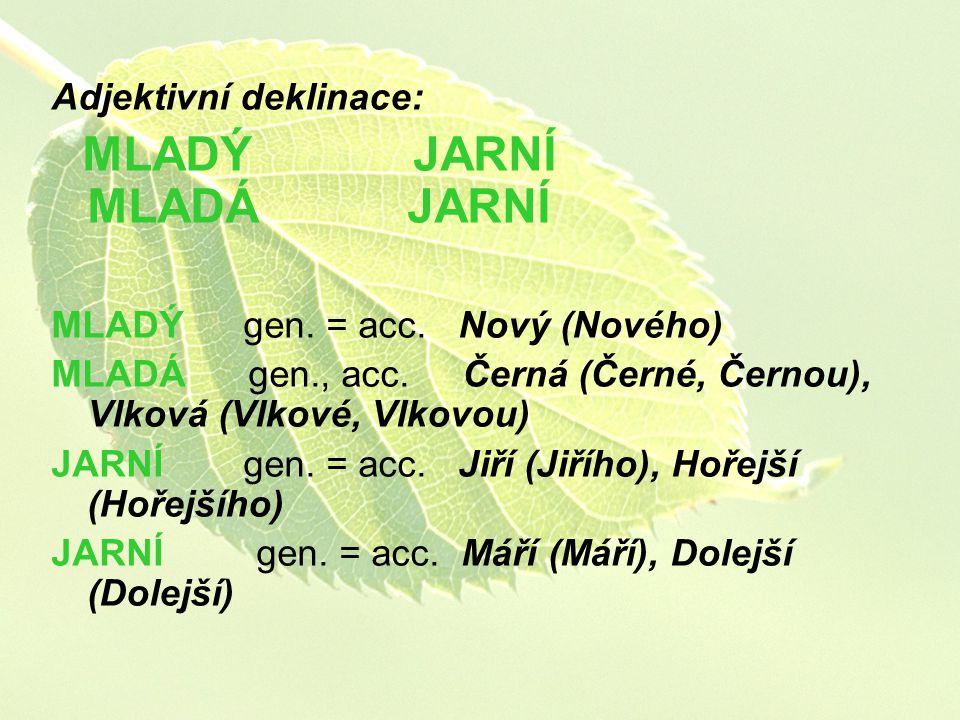 Adjektivní deklinace: MLADÝ JARNÍ MLADÁ JARNÍ MLADÝ gen. = acc. Nový (Nového) MLADÁ gen., acc. Černá (Černé, Černou), Vlková (Vlkové, Vlkovou) JARNÍ g
