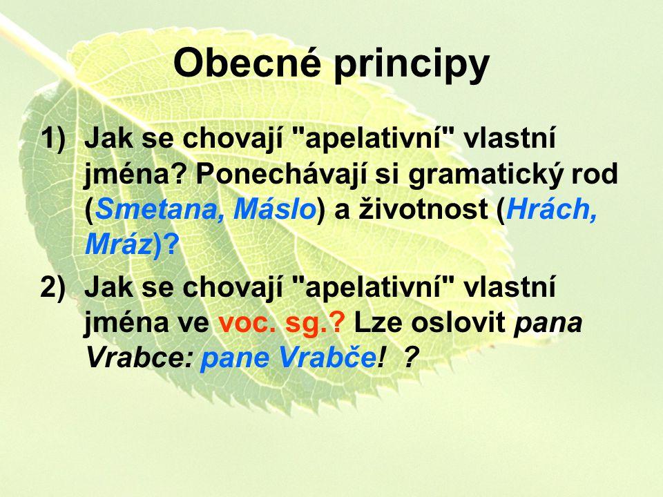 Obecné principy 1)Jak se chovají