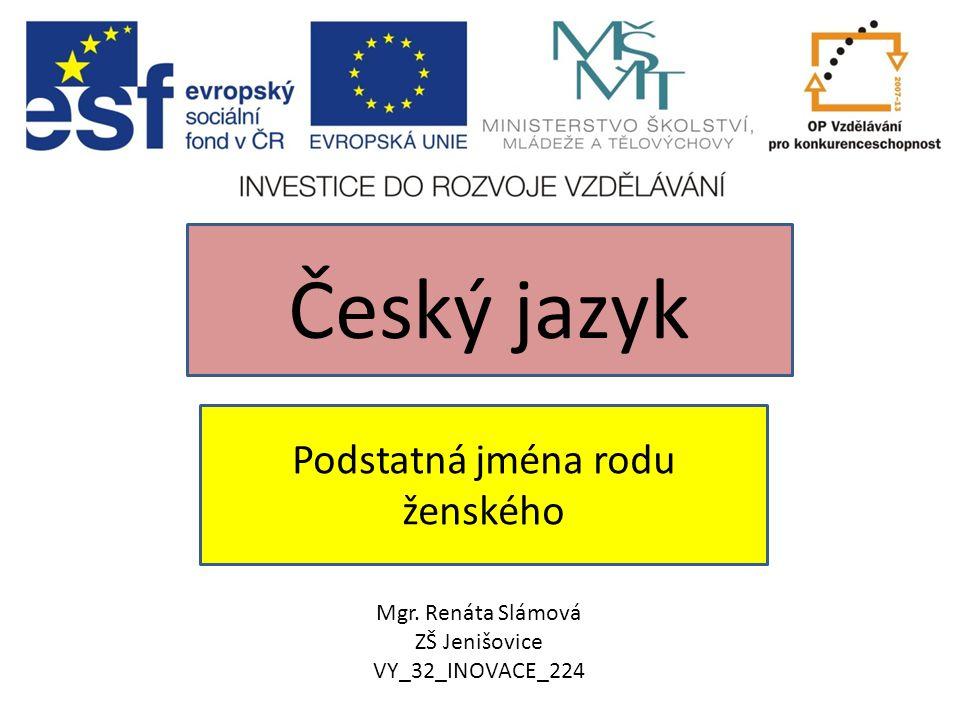 Podstatná jména rodu ženského Český jazyk Mgr. Renáta Slámová ZŠ Jenišovice VY_32_INOVACE_224
