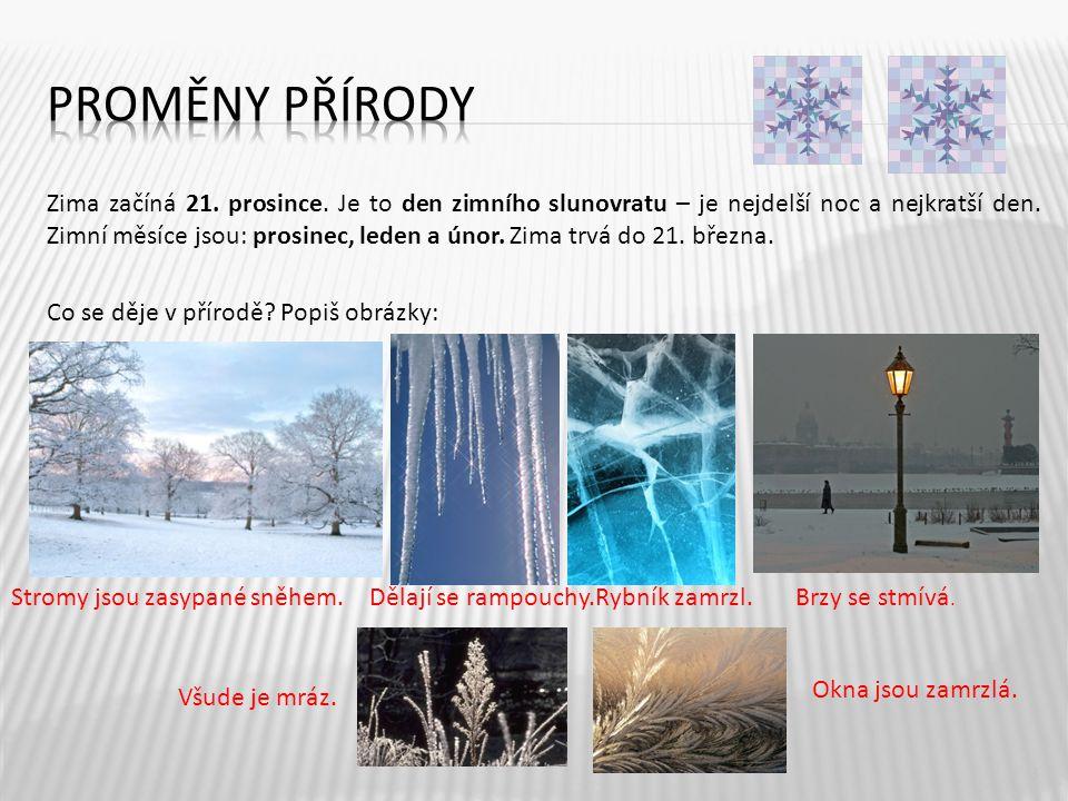 Zima začíná 21. prosince. Je to den zimního slunovratu – je nejdelší noc a nejkratší den. Zimní měsíce jsou: prosinec, leden a únor. Zima trvá do 21.