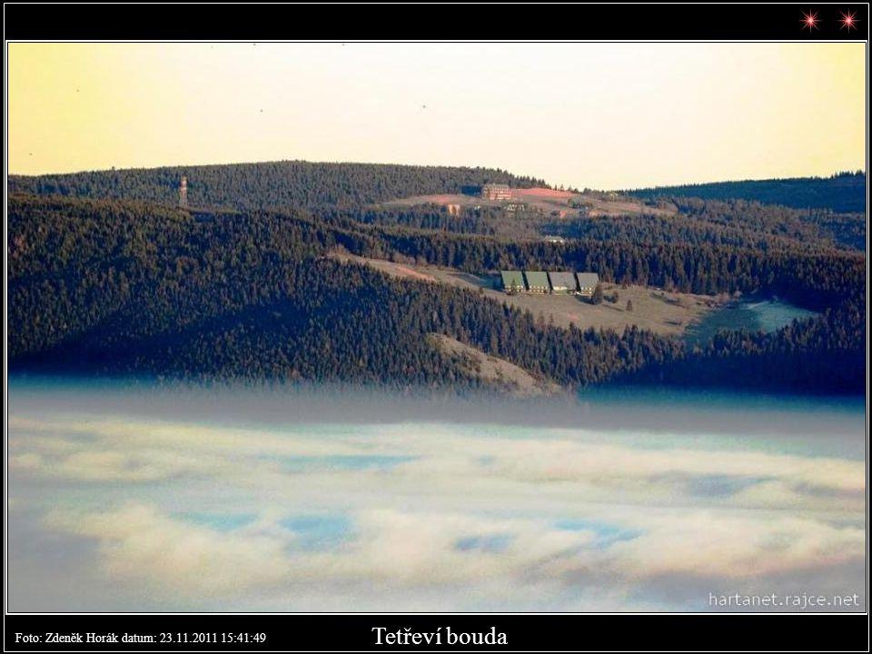 Tetřevky v dálce Foto: Zdeněk Horák datum: 23.11.2011 15:41:34