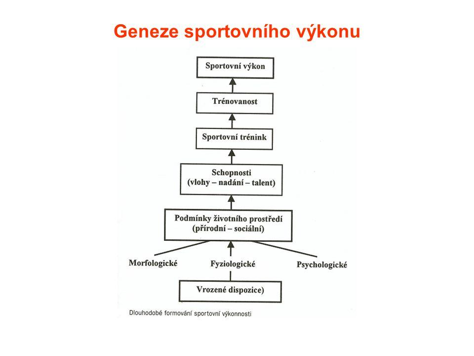 Struktura sportovního výkonu( z pohledu jedince) Systém prvků, který má zákonité uspořádání a propojení sítí vzájemných vztahů.