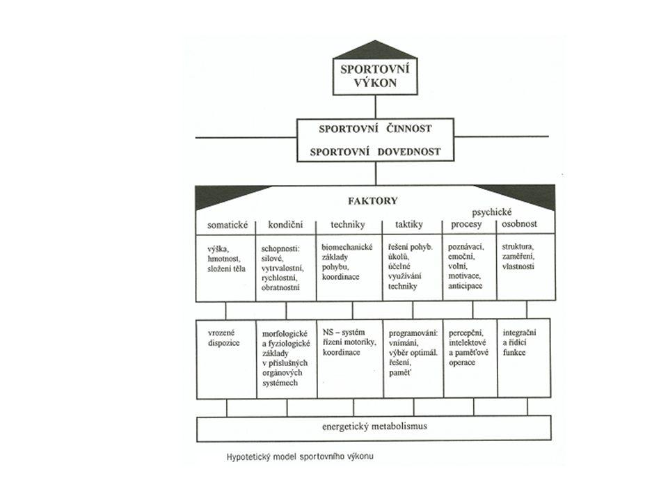 Hierarchie faktorů - přímo limitující SV - faktory, u kterých lze dosáhnout určitou optimální úroveň rozvoje - doplňující Suplicita faktorů určující SV.