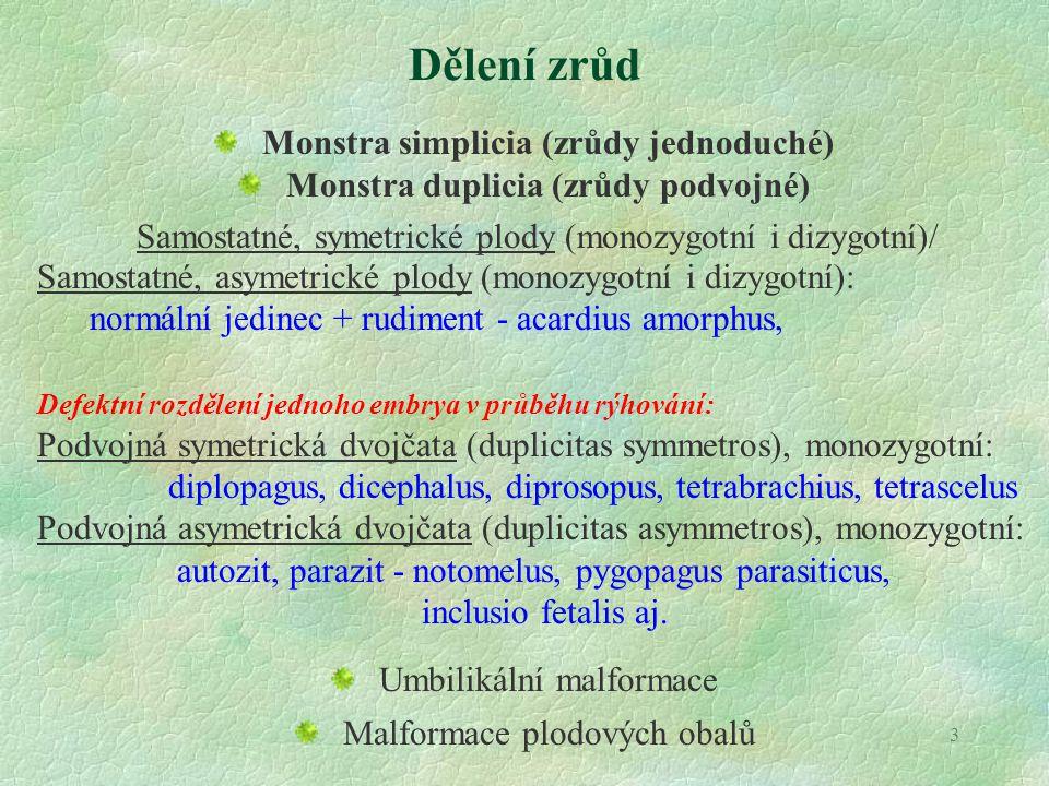 3 Dělení zrůd Monstra simplicia (zrůdy jednoduché) Monstra duplicia (zrůdy podvojné) Samostatné, symetrické plody (monozygotní i dizygotní)/ Samostatn
