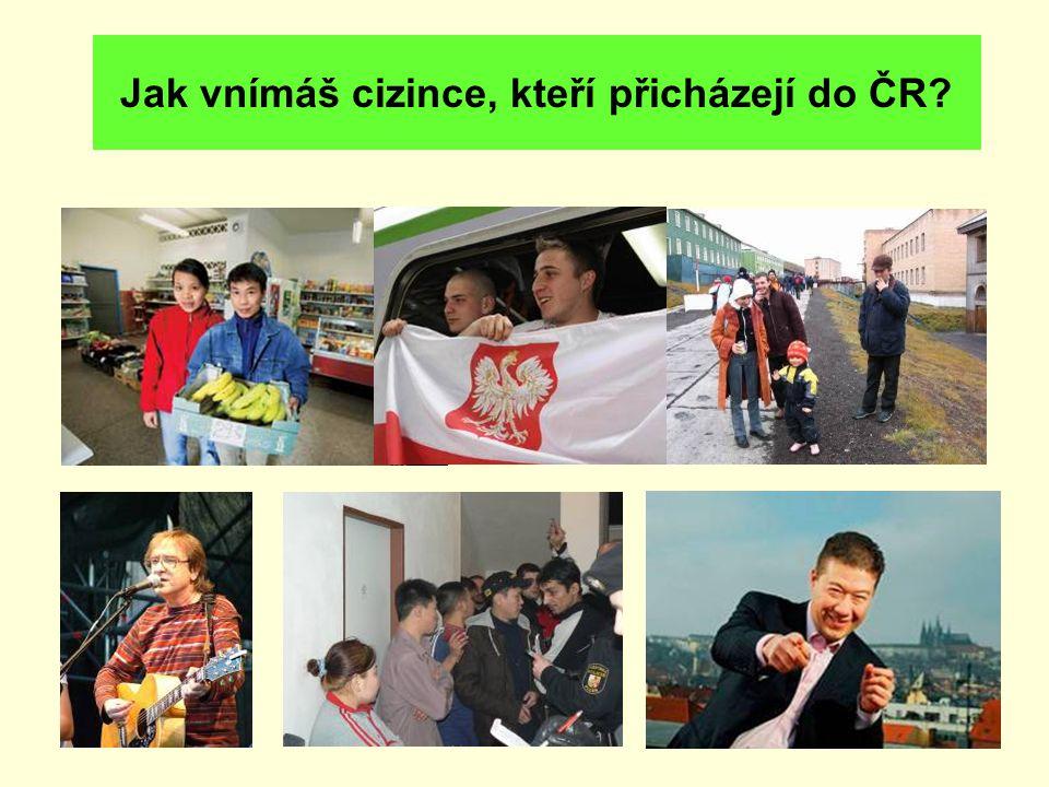 Jak vnímáš cizince, kteří přicházejí do ČR?