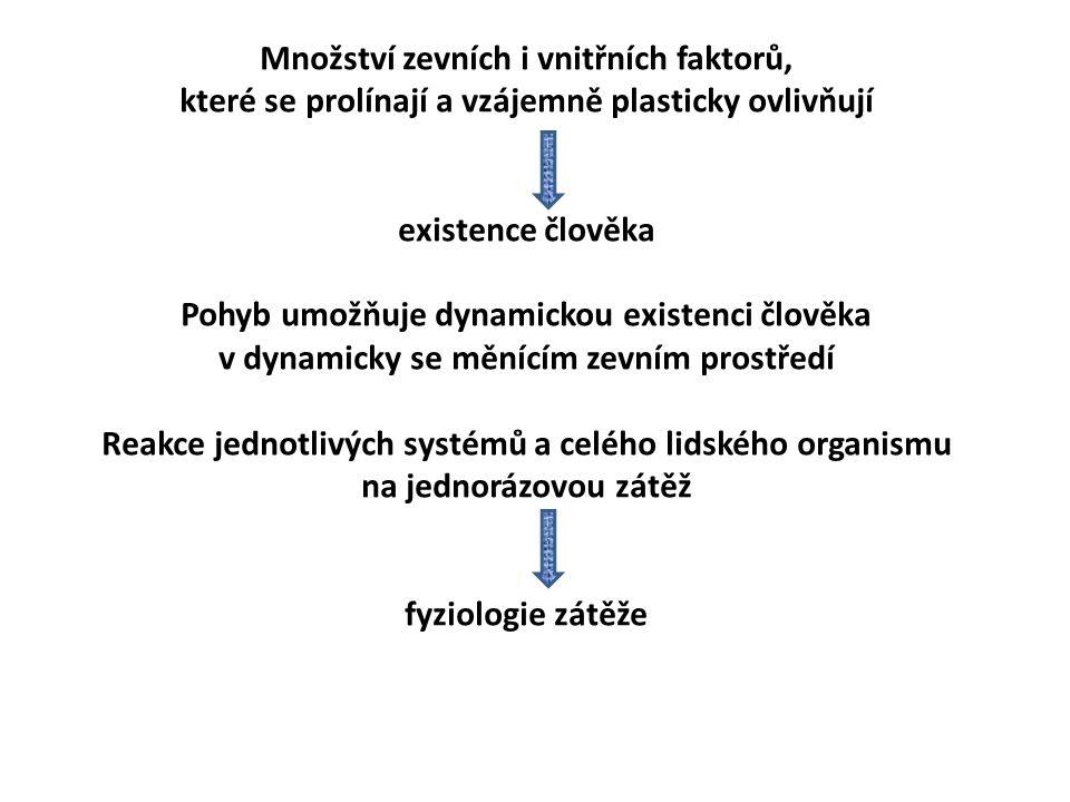 ADAPTACE NA ODPOROVÝ TRÉNINK Při intenzivním silovém (vytrvalostně-silovém) tréninku 1.