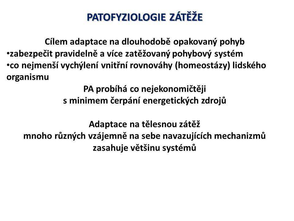 PATOFYZIOLOGIE ZÁTĚŽE Soubor adaptačních mechanizmů organismus odolný vůči tělesné zátěži =TRÉNOVANOST Míra schopnosti zvyšovat trénovanost =TRÉNOVATELNOST