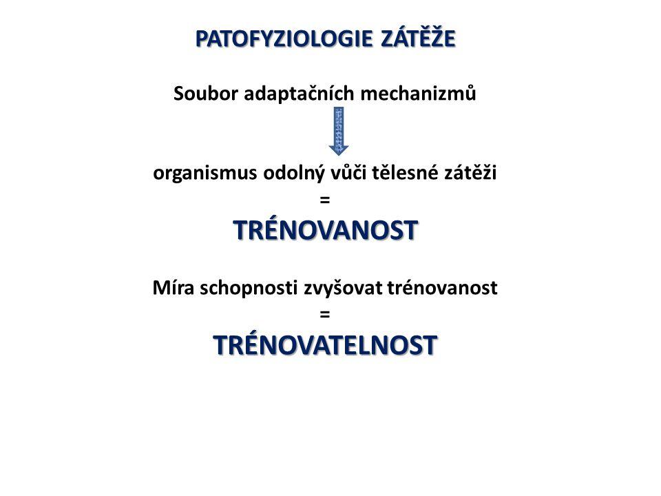 PATOFYZIOLOGIE ZÁTĚŽE Trénovanost i trénovatelnost Genetická složka se podílí na trénovanosti i trénovatelnosti