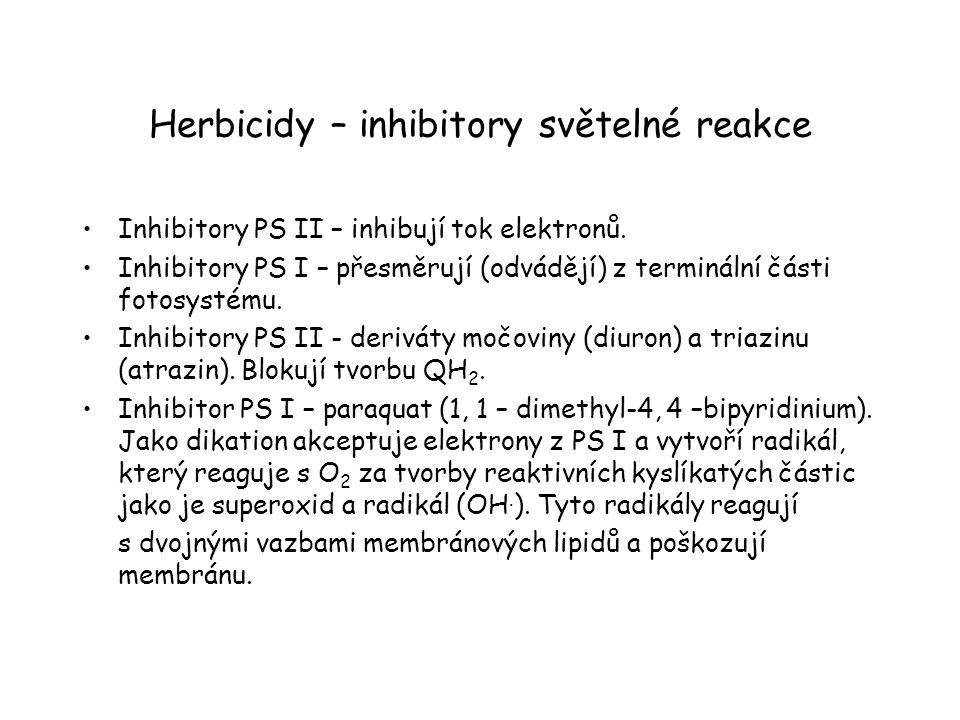 Herbicidy – inhibitory světelné reakce Inhibitory PS II – inhibují tok elektronů. Inhibitory PS I – přesměrují (odvádějí) z terminální části fotosysté