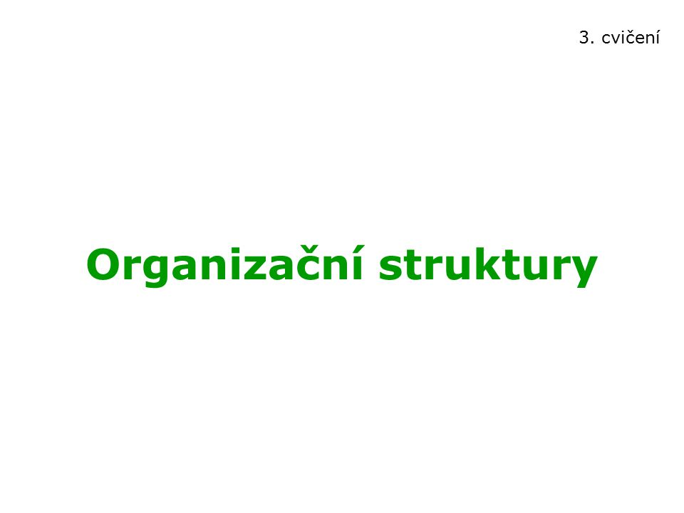 Organizační struktury 3. cvičení
