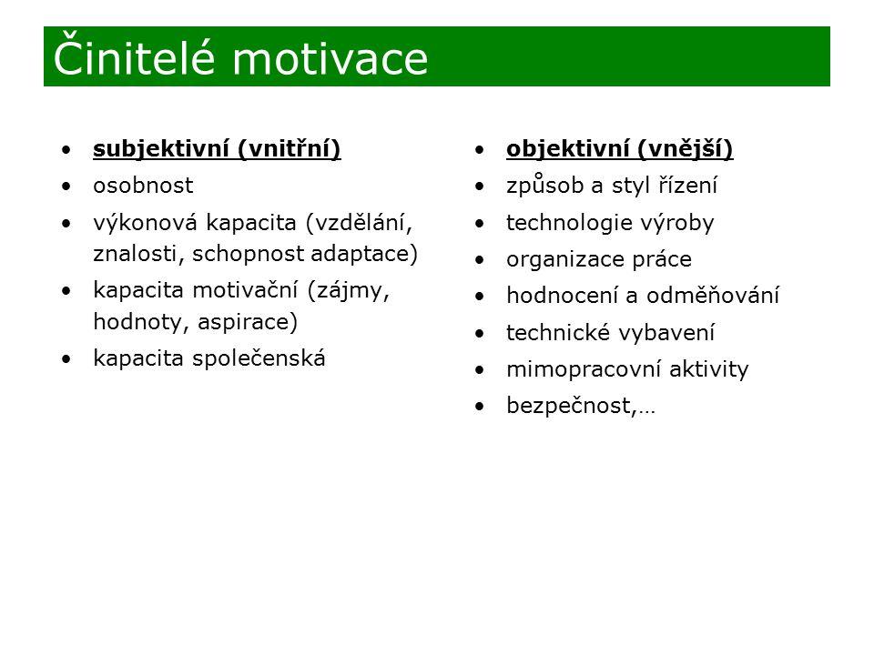 subjektivní (vnitřní) osobnost výkonová kapacita (vzdělání, znalosti, schopnost adaptace) kapacita motivační (zájmy, hodnoty, aspirace) kapacita spole