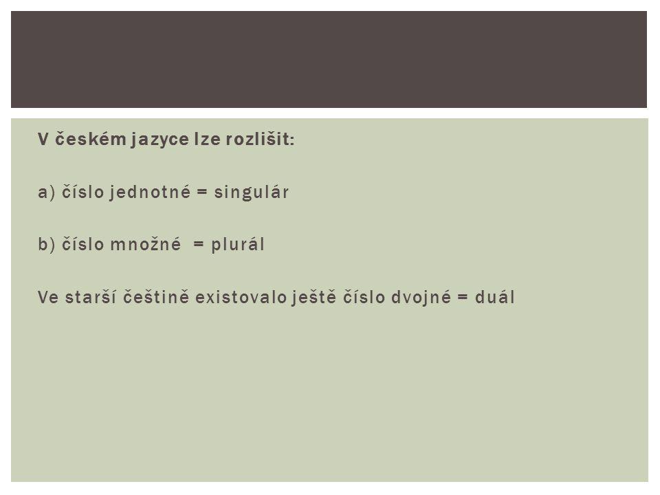 V českém jazyce lze rozlišit: a) číslo jednotné = singulár b) číslo množné = plurál Ve starší češtině existovalo ještě číslo dvojné = duál