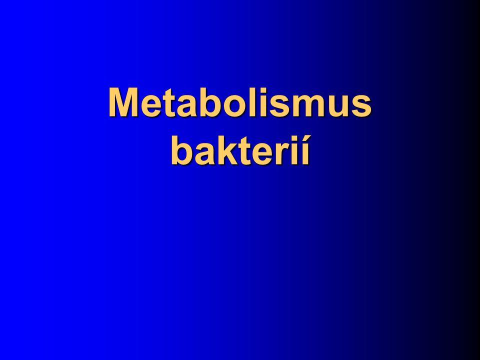 Metabolismus bakterií