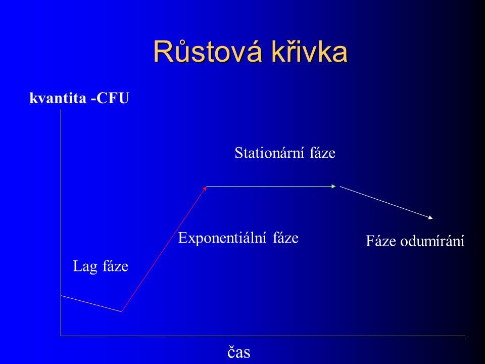 Růstová křivka čas kvantita -CFU Lag fáze Exponentiální fáze Stationární fáze Fáze odumírání