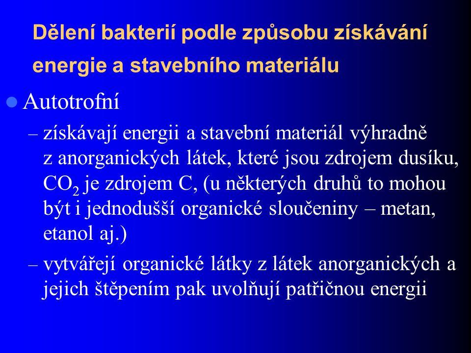 Dělení bakterií podle způsobu získávání energie a stavebního materiálu Autotrofní – získávají energii a stavební materiál výhradně z anorganických látek, které jsou zdrojem dusíku, CO 2 je zdrojem C, (u některých druhů to mohou být i jednodušší organické sloučeniny – metan, etanol aj.) – vytvářejí organické látky z látek anorganických a jejich štěpením pak uvolňují patřičnou energii