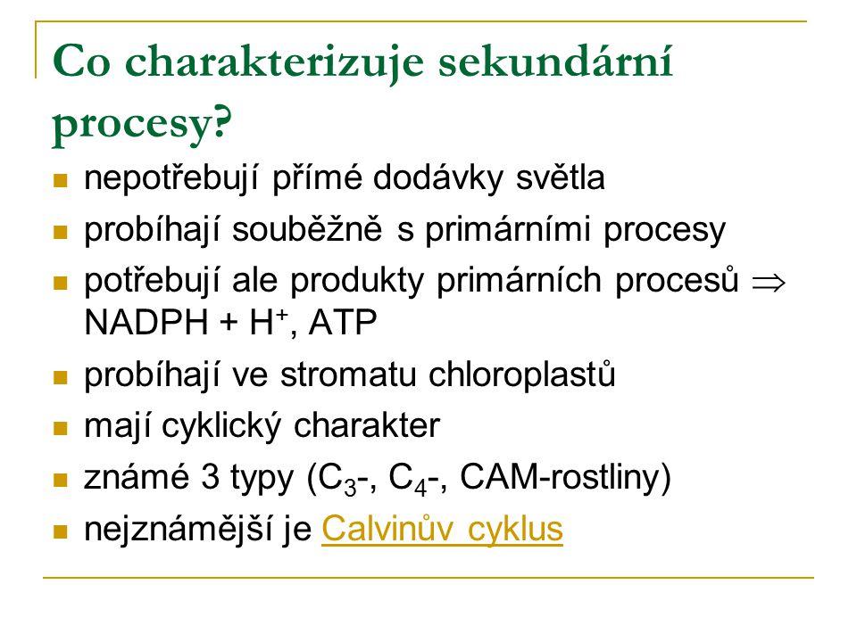 Co charakterizuje sekundární procesy? nepotřebují přímé dodávky světla probíhají souběžně s primárními procesy potřebují ale produkty primárních proce
