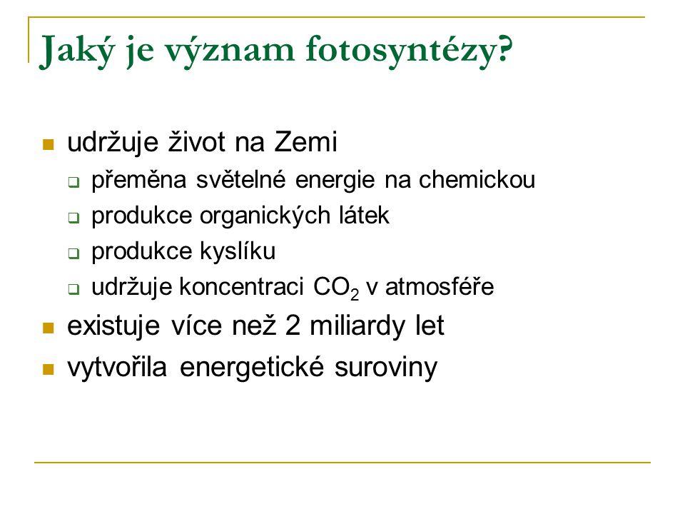 Jaký je význam fotosyntézy? udržuje život na Zemi  přeměna světelné energie na chemickou  produkce organických látek  produkce kyslíku  udržuje ko