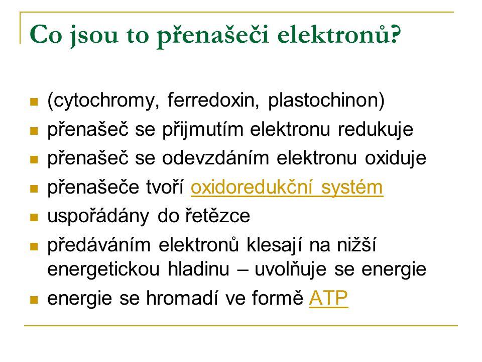 Co jsou to přenašeči elektronů? (cytochromy, ferredoxin, plastochinon) přenašeč se přijmutím elektronu redukuje přenašeč se odevzdáním elektronu oxidu