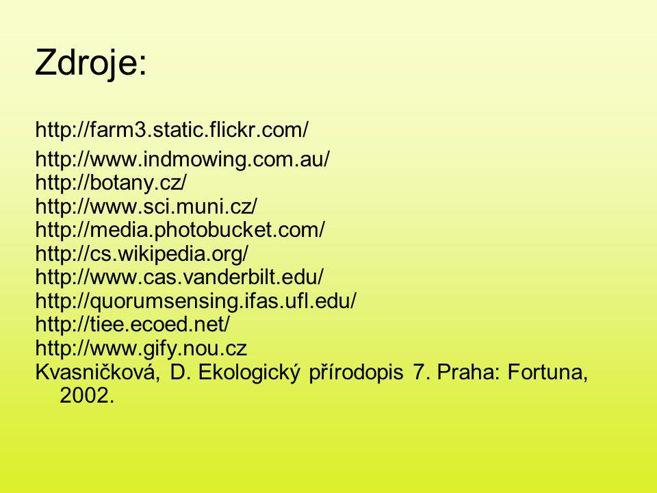 Zdroje: http://farm3.static.flickr.com/ http://www.indmowing.com.au/ http://botany.cz/ http://www.sci.muni.cz/ http://media.photobucket.com/ http://cs