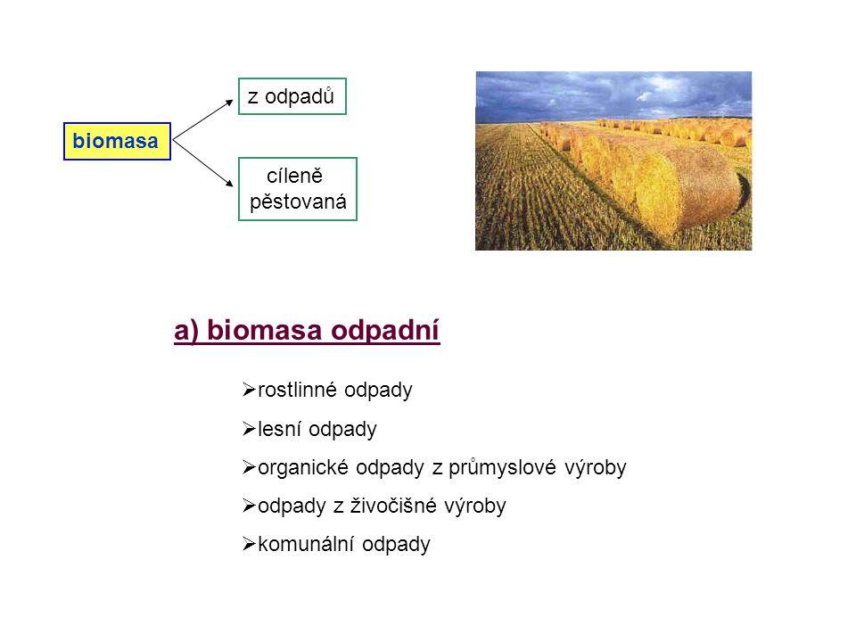 a) biomasa odpadní  rostlinné odpady  lesní odpady  organické odpady z průmyslové výroby dpady z živočišné výroby  komunální odpady biomasa z odpa