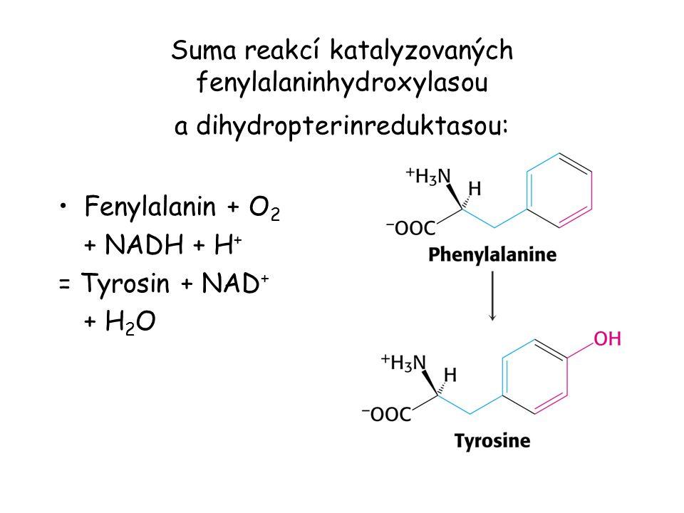 Suma reakcí katalyzovaných fenylalaninhydroxylasou a dihydropterinreduktasou: Fenylalanin + O 2 + NADH + H + = Tyrosin + NAD + + H 2 O
