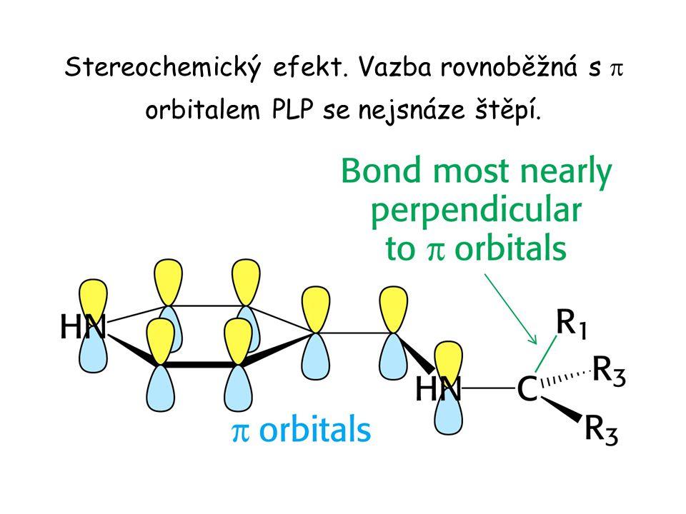 Stereochemický efekt. Vazba rovnoběžná s  orbitalem PLP se nejsnáze štěpí.