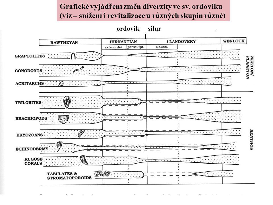 Grafické vyjádření změn diverzity ve sv. ordoviku (viz – snížení i revitalizace u různých skupin různé) ordovik silur