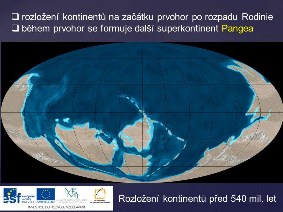  rozložení kontinentů na začátku prvohor po rozpadu Rodinie  během prvohor se formuje další superkontinent Pangea Rozložení kontinentů před 540 mil.