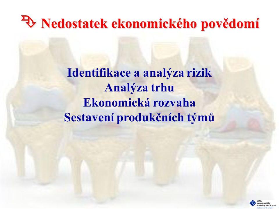  Nedostatek ekonomického povědomí Identifikace a analýza rizik Analýza trhu Ekonomická rozvaha Sestavení produkčních týmů