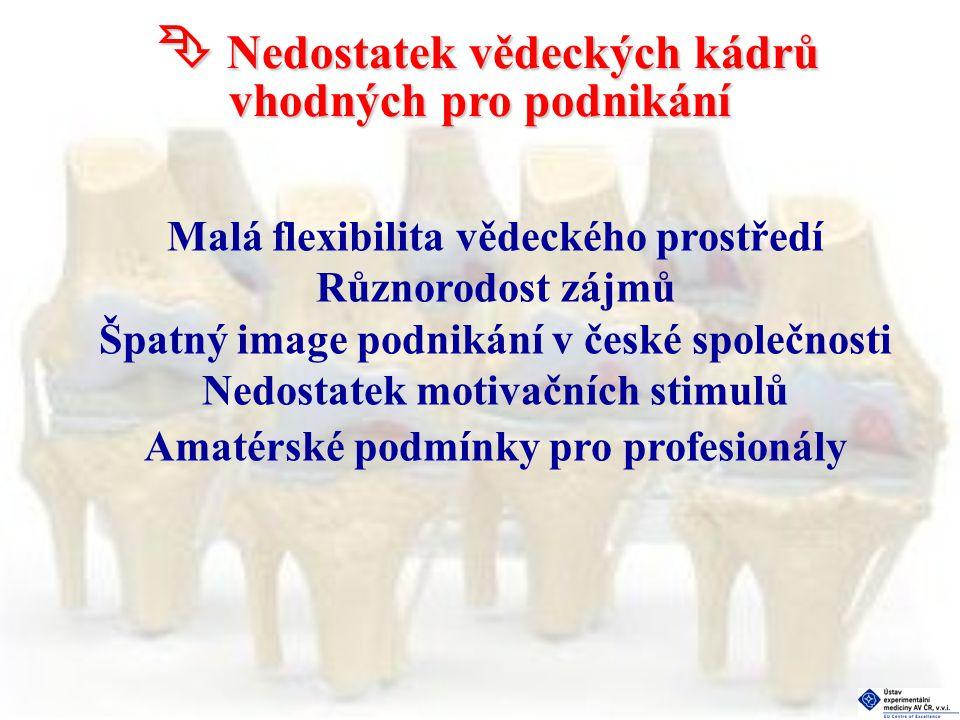  Nedostatek vědeckých kádrů vhodných pro podnikání Malá flexibilita vědeckého prostředí Různorodost zájmů Špatný image podnikání v české společnosti Nedostatek motivačních stimulů Amatérské podmínky pro profesionály