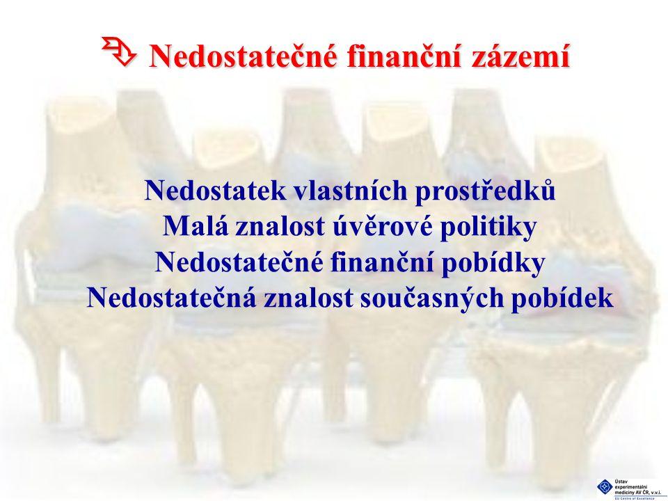  Nedostatečné finanční zázemí Nedostatek vlastních prostředků Malá znalost úvěrové politiky Nedostatečné finanční pobídky Nedostatečná znalost současných pobídek