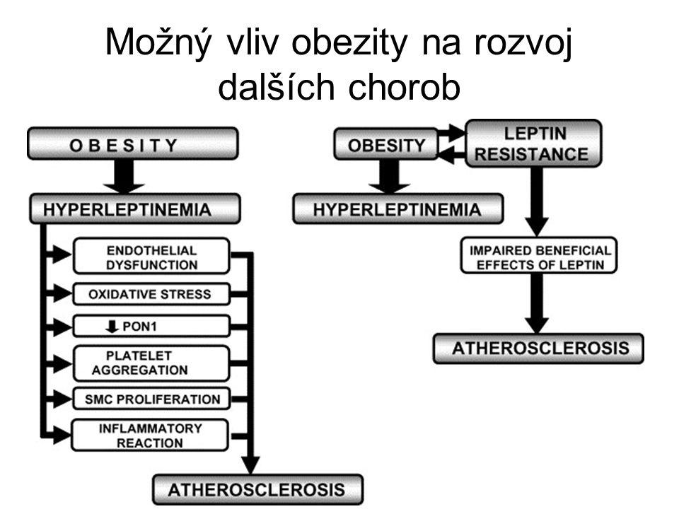 Možný vliv obezity na rozvoj dalších chorob